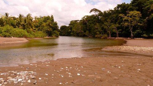 Corcovado National Park